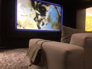 Hedwig media room with Sony projector